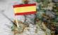西班牙留学归来后的一封独白信